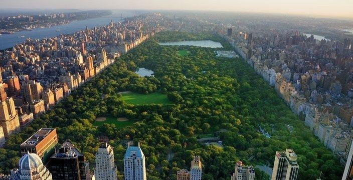 中央公园豪华公寓顶级高端地产